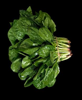 Oh-liban-restaurant-libanais-yvelines-78-salade