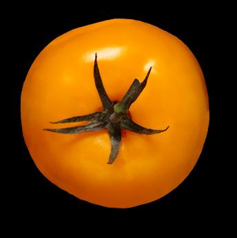 Oh-liban-restaurant-libanais-yvelines-78-tomate-jaune